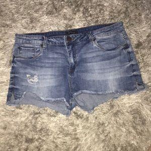 STS cute denim cutoff shorts 😎🕺💯